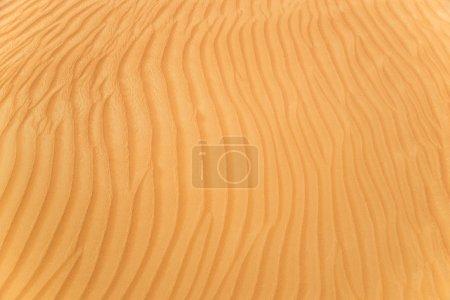 Photo pour Détail d'une belle dune de sable du désert, texture close-up. - image libre de droit