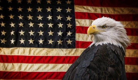 Photo for American Bald Eagle - symbol of america -with flag. United States of America patriotic symbols. - Royalty Free Image