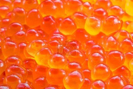 Gros plan sur le caviar rouge. Contexte alimentaire. Macro image .