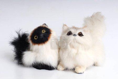 Photo pour Jouet de chat en peluche sur un fond blanc - image libre de droit