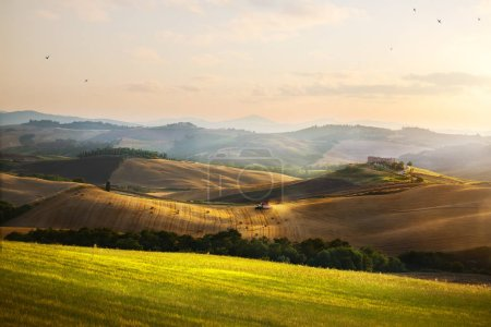 Photo for Italy. Tuscany farmland and rolling hills; summer countryside Landscape - Royalty Free Image