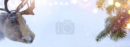 Foto de Navidad santa Claus ciervo y árbol de Navidad en la nieve azul backgroun - Imagen libre de derechos