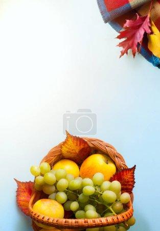 Foto de Fondo de otoño, compositio de frutas de vacaciones de acción de gracias - Imagen libre de derechos