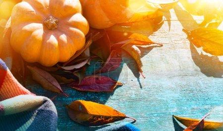 Foto de Fondo de Acción de Gracias con calabazas, hojas de otoño y manta caliente sobre mesa de madera - Imagen libre de derechos