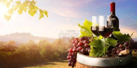 Foto de Fondo del vino del campo de otoño; vid, botellas de vino tinto, copa de vino, barril de vino; concep de cata de vinos - Imagen libre de derechos
