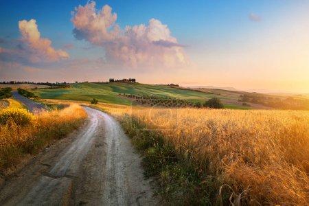Foto de Paisaje patoña de Italia, carretera sucia y tierras de cultivo sobre el cielo del atardecer - Imagen libre de derechos