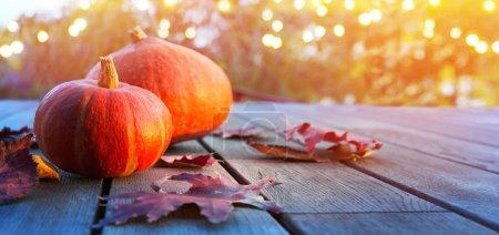 Foto de Fondo de calabaza de otoño, decoración de fiesta de acción de gracias fiesta - Imagen libre de derechos