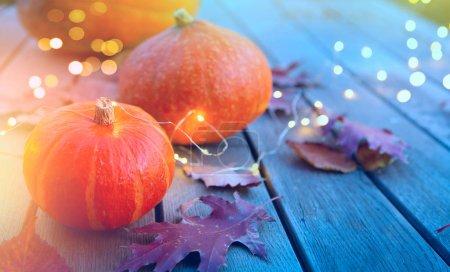 Foto de Thanksgiving holiday party background, autumn pumpkin and holidays light decoration - Imagen libre de derechos