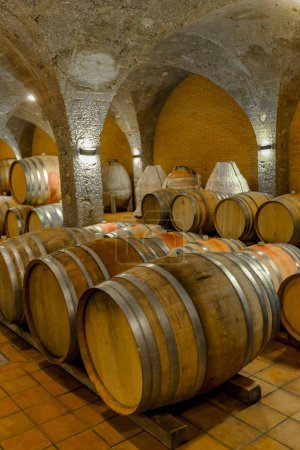 View at old barrels in the wine cellar
