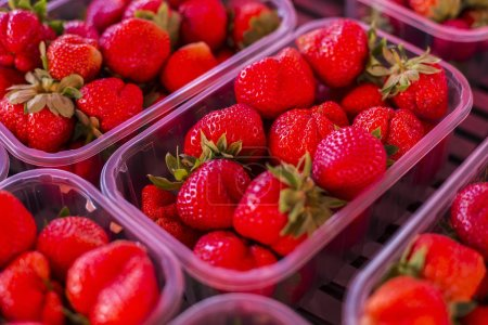 View at fresh strawberries on the market