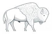 Standing bison illustration