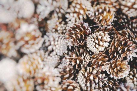 Photo pour Décorations de Noël traditionnelles. Focus sélectif . - image libre de droit