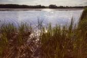 Lake Elmo Park Reserve in Woodbury - St. Paul area. St. Paul, Minnesota, USA.