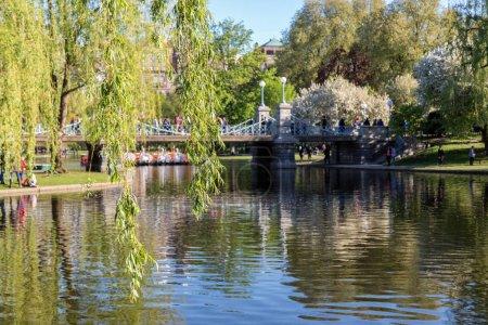 The Boston Public Garden