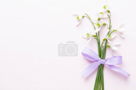 Photo for Fresh snowdrops on pink background with place for text. Spring greeting card. Flat lay. - Royalty Free Image