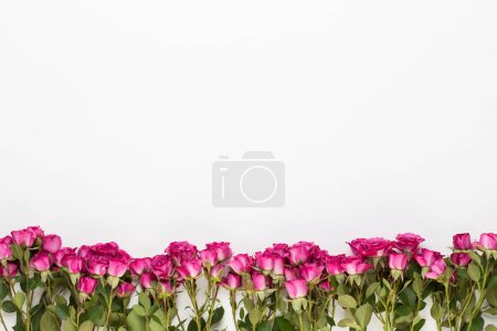 Photo for Flowers composition. Frame made of red rose on white wooden background. Flat lay, top view, copy space. - Royalty Free Image