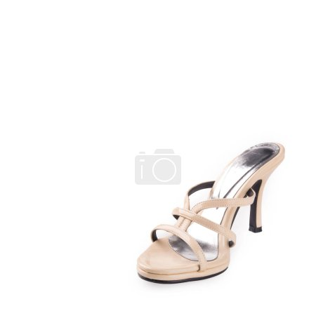 shoe or woman shoe on a background new.