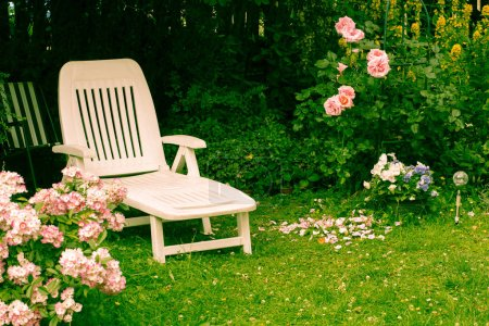 Photo for White deckchair in the garden among pink roses, romantic settings - Royalty Free Image