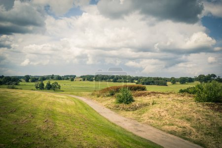 Photo for Summer landscape in rural England - Royalty Free Image