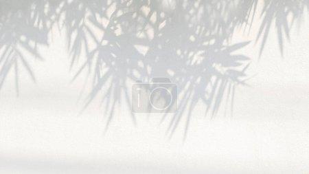 Foto de Fondo de sombra gris abstracto de las hojas de bambú natural rama que cae en la textura de pared de hormigón blanco viejo para el fondo y papel pintado, blanco y negro monocromo ton - Imagen libre de derechos