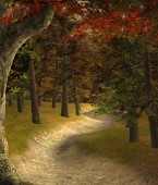 Sunset in a fantasy autumnal forest  3D illustration