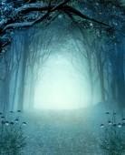 Magic secret passage in a mystic autumnal foggy woodland