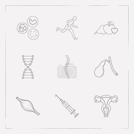 Photo pour Ensemble d'icônes d'anatomie symboles de style de ligne avec muscle, ADN, sport et autres icônes pour la conception de logo de votre application mobile Web . - image libre de droit