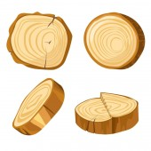 Natural material forest log slice wood and wooden elements