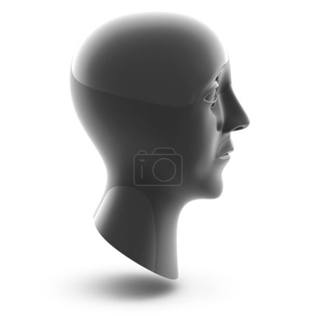3D head in white background. 3D Illustration.