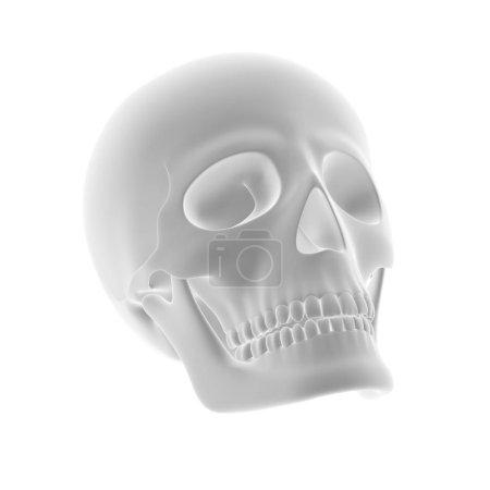 Photo pour La géométrie d'un crâne. Illustration 3D . - image libre de droit