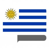 Flag horizontal shape pointer for world map