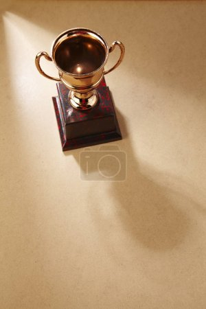 high angle view of golden trophy