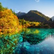 Fantastic view of the Five Flower Lake (Multicolor...