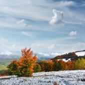 """Постер, картина, фотообои """"Удивительная сцена на осенних гор"""""""