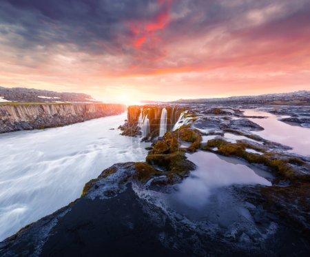 Photo for Colorful sunrise on Famous Selfoss waterfall, Jokulsargljufur National Park, Iceland - Royalty Free Image