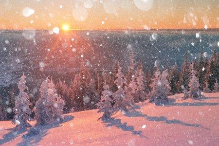 Foto de Paisaje fantástico invierno naranja en montañas cubiertas de nieve que brilla por la luz solar. Dramática escena invernal con árboles nevados. DOF bokeh postproceso efecto de la luz. Collage de vacaciones de Navidad - Imagen libre de derechos