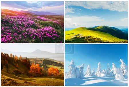 Photo pour Paysages naturels quatre saisons en montagne. milieux naturels - image libre de droit