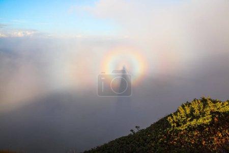 Photo pour Illusion optique Brocken Spectre dans la prairie parmi les plus hautes montagnes du matin brouillard et ciel bleu. Beau fond d'automne . - image libre de droit