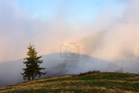Photo pour Illusion optique Brocken Spectre dans la prairie parmi les plus hautes montagnes du matin brouillard et ciel bleu. Lieu de localisation Parc national des Carpates, Ukraine, Europe . - image libre de droit