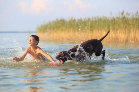 Photo for Beautiful sunny summer scenery. On the day the small boy is playing, running jumping with the hunting brown dog at the lake. Happy childhood moments. The silhouette is reflecting on the water. - Royalty Free Image
