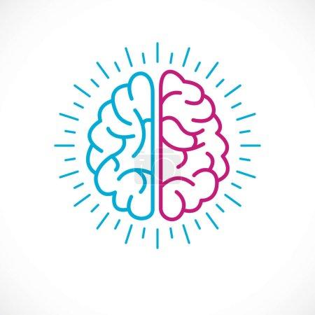 Illustration pour Coloré cerveau anatomique humain sur fond blanc - image libre de droit