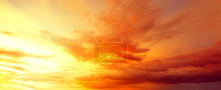 Photo for Sunlight in warm summer sky - Royalty Free Image