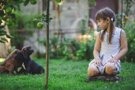 Photo pour Mignonne petite fille jouer avec des chiots en plein air - image libre de droit