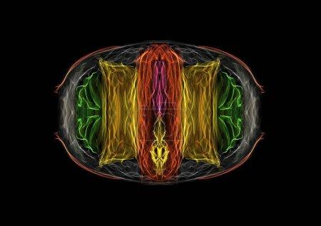 Foto de Emparedado americano gut salchicha con salsa de mostaza chesse rebanada ensalada de lechuga, seda neón gráfico luminoso dibujar aislado en negro, interactivo arte generativo - Imagen libre de derechos