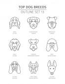 Top dog breeds Pet outline collection Vector illustration