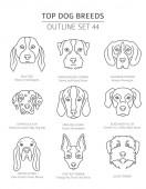 Top dog breeds Hunting dogs set Pet outline collection Vector illustration