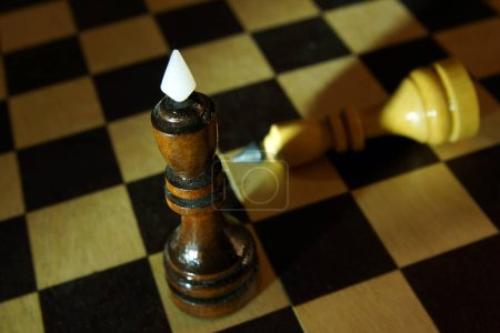 Chess king won adversary. Victory and defeat. Concept with wooden chess pieces