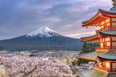 Fujiyoshida, Japan view of Mt. Fuji and pagoda in spring season with cherry blossoms at dusk.