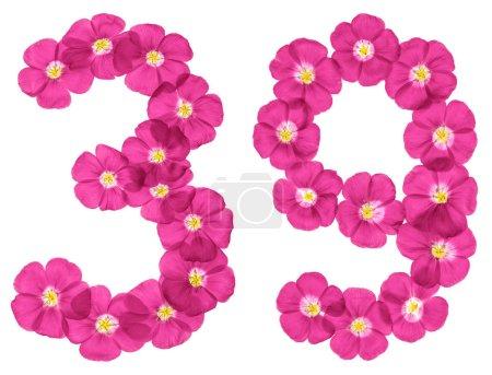 Photo pour Chiffre arabe 39, trente neuf, de fleurs roses de lin, isolé sur fond blanc - image libre de droit