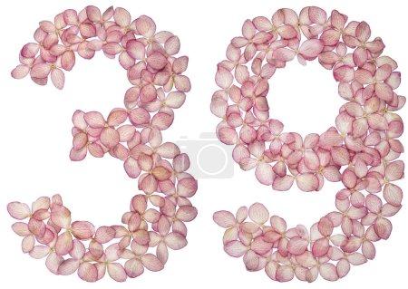 Photo pour Chiffre arabe 39, trente neuf, des fleurs d'Hortensia, isolé sur fond blanc - image libre de droit